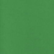 Spring Fever Solid Paper Kelly Green