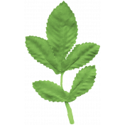 Special Day Leaf 5
