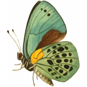 Picnic Day Print Butterfly1