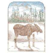 Back To Nature Pocket Card 01 3x4