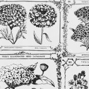 Wildflower Paper 11