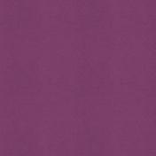 Wildflower Solid Paper Purple