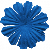 Public Discourse Flower Blue