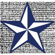 Public Discourse Print Star 24