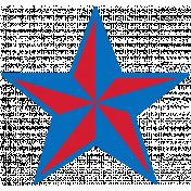 Public Discourse Print Star 18
