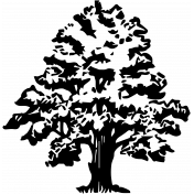 Tangible Hope Tree Vintge Image