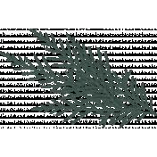 Winter Day Pine Branch 2