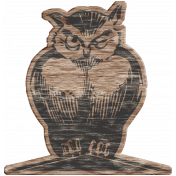 Winter Day Wood Owl