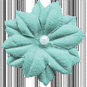 Heart Eyes Flower Mint