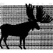 Moose Shape