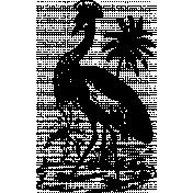 Vintage African Bird 1 Template