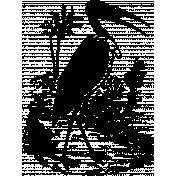 Vintage African Bird 3 Template