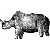 Vintage African Rhino Template