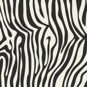 Kenya Papers Kit #3- Zebra Paper 1