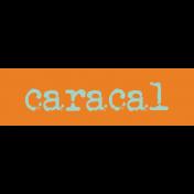 Kenya WordArt caracal