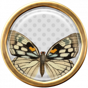Seriously Butterflies Elements-Round Brad 04