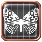 Seriously Butterflies Elements- Square Brad 01