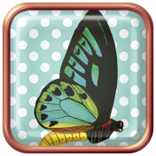 Seriously Butterflies Elements- Square Brad 03