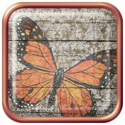 Seriously Butterflies Elements- Square Brad 05