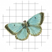 Seriously Butterflies Elements- Circle 03