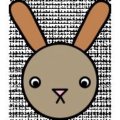 Animal Color Illustrations- Bunny