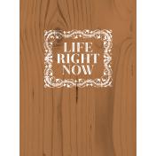 Free Spirit Pocket Card- 07