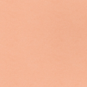 Free Spirit Solid Paper- Peach 1
