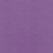 Free Spirit Solid Paper- Purple