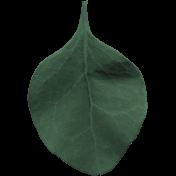 Tea & Toast Elements Kit- Leaf 1