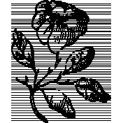 Vintage Images- Flower 7