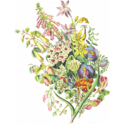 Seriously Floral 2 Illus- Floral 1