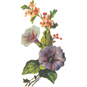 Seriously Floral 2 Illus- Floral 2