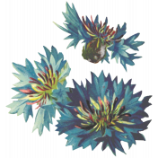 Seriously Floral 2 Illus- Floral 5