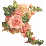 Seriously Floral 2 Illus- Floral 8