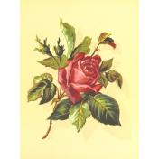 Seriously Floral #2 Pocket Cards Kit- JC 26