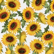 Go West-Papers Kit #2 -Paper Sunflowers