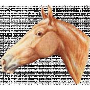 Go West Horses- Horse 9