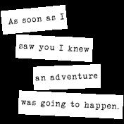 Desert Spring Elements: word strips- adventure