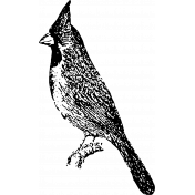 Birds In Snow Stamps- Cardinal Stamp