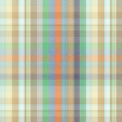 The Good Life- July 2020 Plaid & Solid Papers- Plaid Paper 1