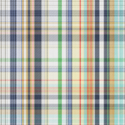 The Good Life- July 2020 Plaid & Solid Papers- Plaid Paper 3
