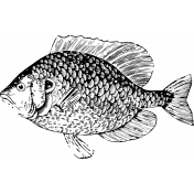 The Good Life - July 2020 Stamps - Fish Template