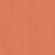 The Good Life: March 2021 Plaids & Solids Kit- Solid Paper Orange