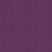 The Good Life: March 2021 Plaids & Solids Kit- Solid Paper Purple