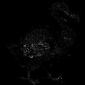Collage 01_Dodo bird