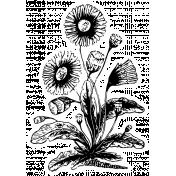 The Good Life: April Collage Kit- Sticker Flower 1