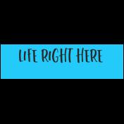 Summer Lovin_Label-Life Right Here