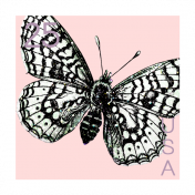 Good Life May 21 Collage_Postage Stamp-Butterfly