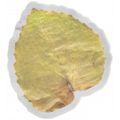 Good Life May 21 Collage_Vellum-Leaf yellow