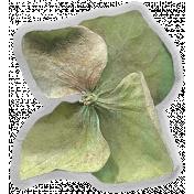 Good Life July 21_Flower-Green-Vellum